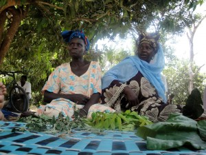 Traditional Midwives in Kabar with their medicinal herbs