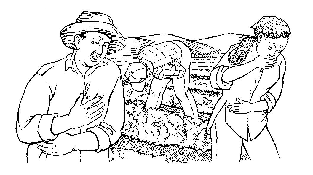 Hesperian Staff