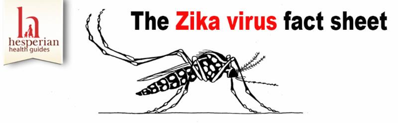 Zika banner
